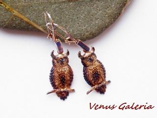 Zwierzaki w Venus Galeria
