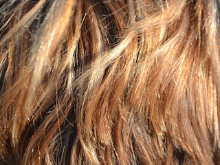 Domowe sposoby na pasemka we włosach.