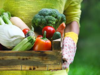 Zdrowe produkty spożywcze bio!
