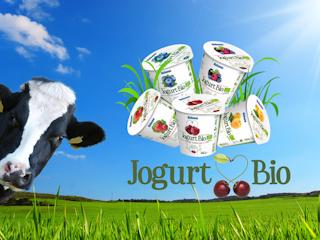 Jogurt BIO – cóż to za nowość?